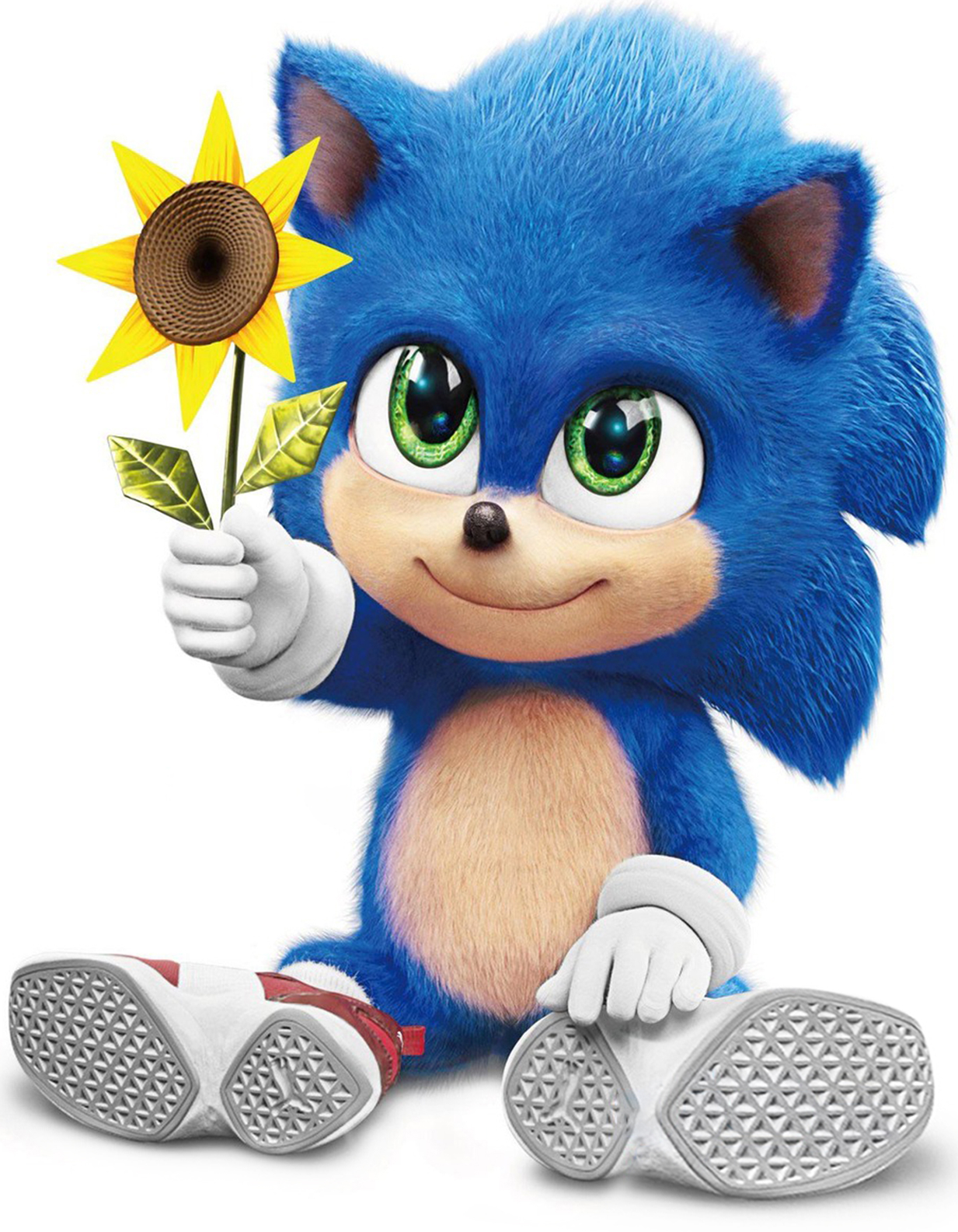 Sonic The Hedgehog 2020 Heroes Wiki Fandom