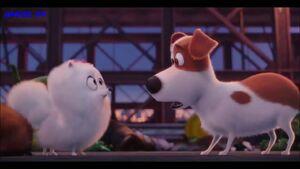 Gidget and Max