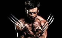 The Wolverine Claws