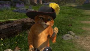 Puss 2
