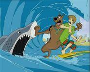 Shaggy, Scooby Doo & Shark