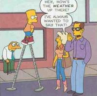 Sky-High Bart!