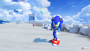 Sonic surfing suit