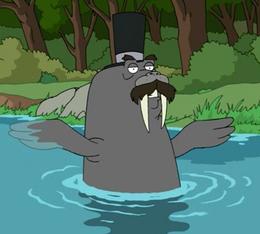 Mister Flippers