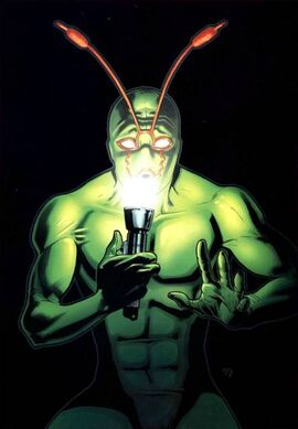 Ambush Bug-008