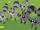 Harvey Street Raccoons