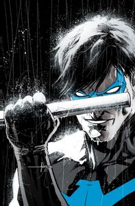 Nightwing Rebirth Vol 1 1 Textless (1)