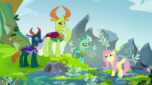 Fluttershy apologizing to the changelings S8E2