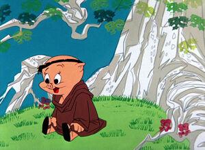 Robinhooddaffy (12)