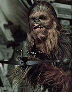 Chewie-Chewbacca1