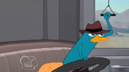 Perry conduciendo
