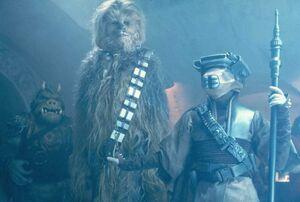 Chewbacca with Boush