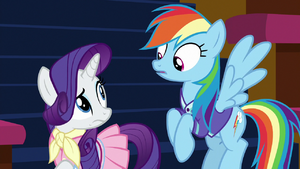 Rarity and Rainbow Dash looking uncertain S8E17
