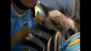Buzz and Scuzz with Stripes during the race.PNG
