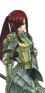 18Erza's new armor