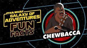 Chewbacca Star Wars Galaxy of Adventures Fun Facts