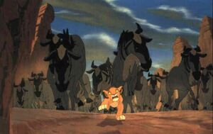 Walt-disney-studios-the-lion-king--simba-and-wildebeests
