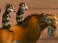 Crash & Eddie on Diego's back