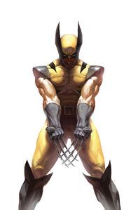 Wolverine Vol 3 73 70th Anniversary Variant Textless