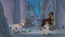 Lady and the Tramp 2 Promotional Images - 8