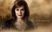 Esme-cullen-the-twilight-saga-new 1680x1050 29-wide