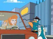 Perry asustado