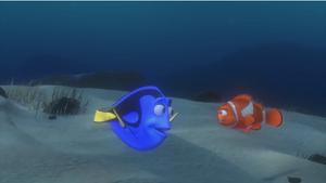 Marlin meets Dory