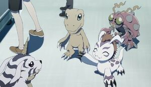Gabumon, Agumon, Gomamon and Tentomon