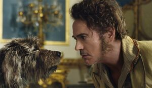 Dolittle-downey-dog-small