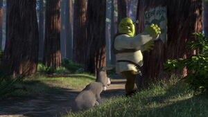 Donkey ass bumps right into the Shrek's ass