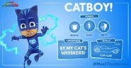 Catboy Stats