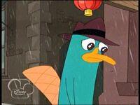 Perry llora