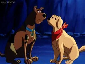 Scooby and Amber