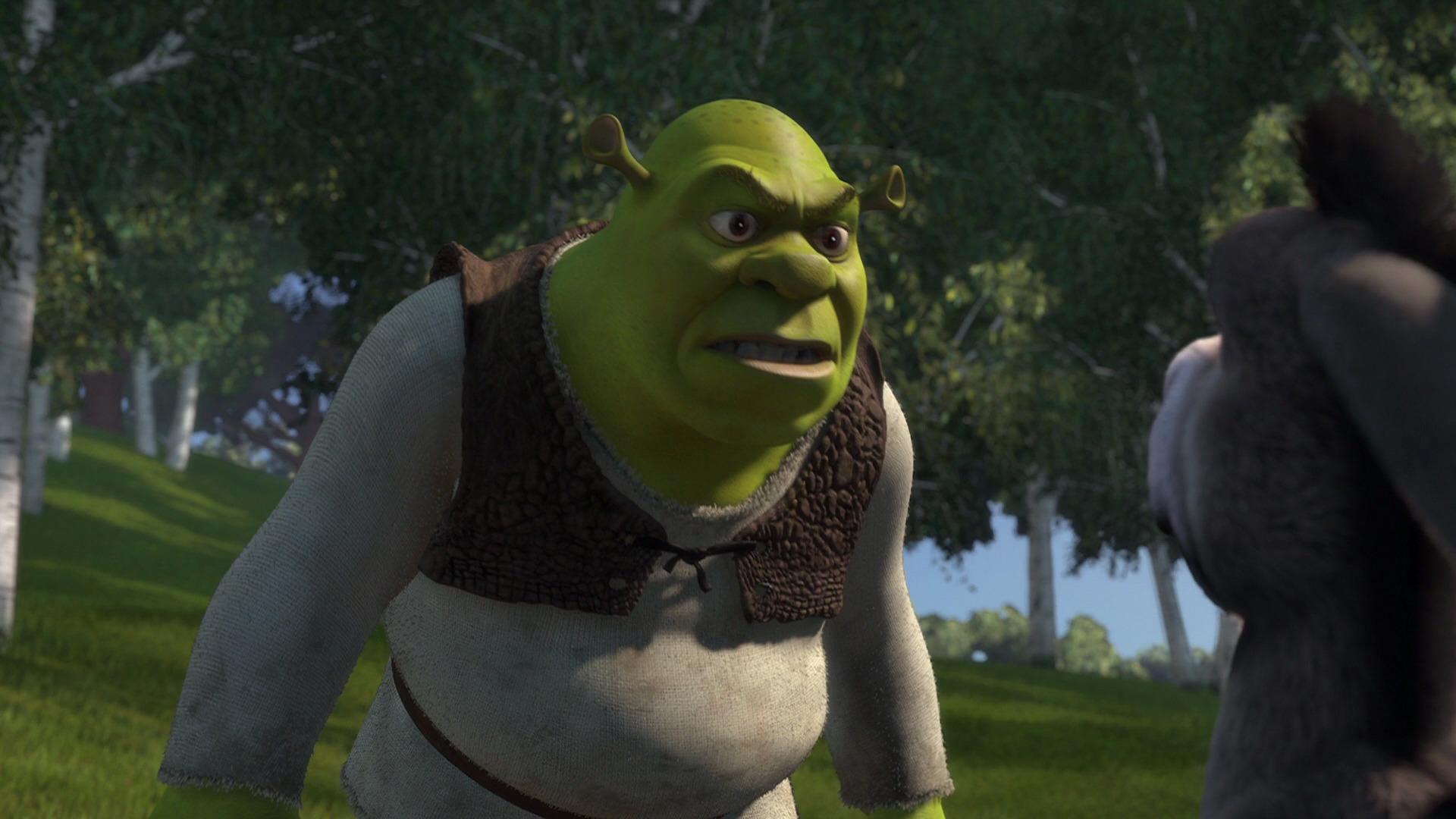 Image result for shrek movie screencaps