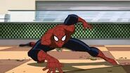 Ultimate spidey