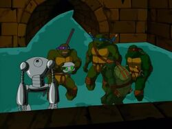Turtles and Fugitoid (Worlds Collide, Part 1)