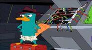 Perry en pañales