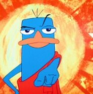 Perry way of the platypus