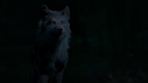 Hope as Werewolf
