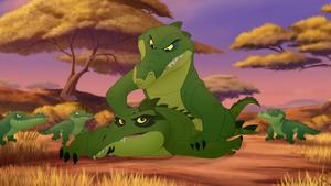Let-sleeping-crocs-lie (379)