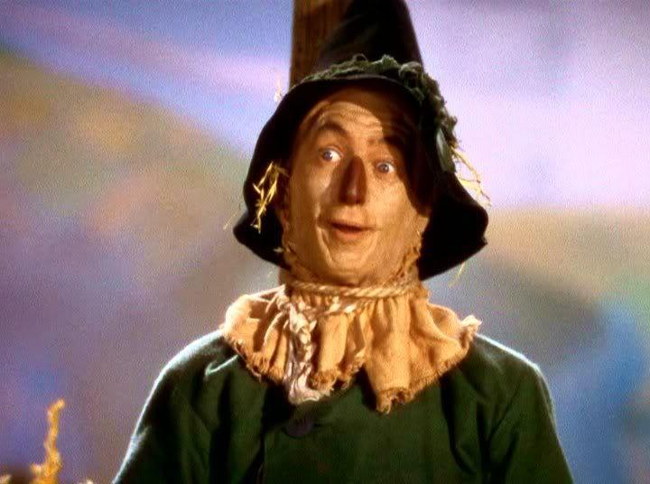 Scarecrow Oz Heroes Wiki Fandom Powered By Wikia