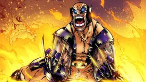 Wolverine-Wallpaper-Full-HD-25