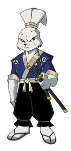 Miyamoto Usagi (TMNT 2003)