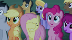 Audience getting excited; Fluttershy covering her eyes S6E6