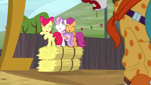 Cutie Mark Crusaders laugh at Trouble Shoes S5E6