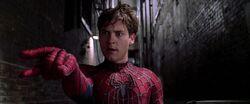 Peter Parker 3
