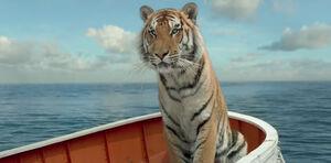 Pi-parker-tiger-11182012-123617