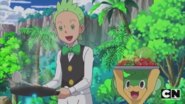 Cilan and Pansage in Beach
