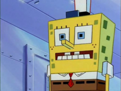 Spongetron