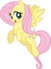 My first attempt at vectoring mlp fim fluttershy by sonarfoobthegreat-d5el31e